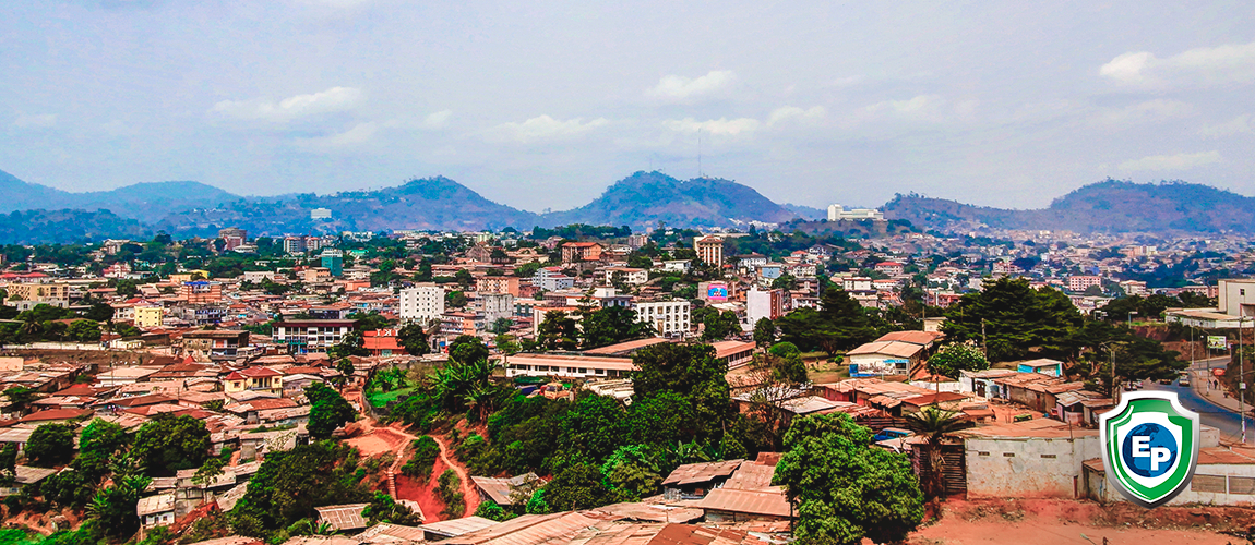 Programs Cameroon Has Put In Place For SMEs