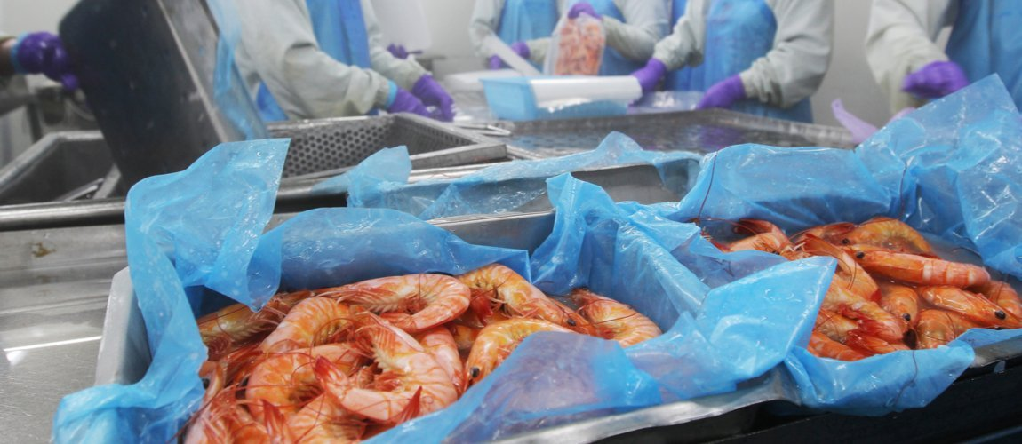US anti-dumping duty hike on Vietnam shrimps to hurt Indian exports
