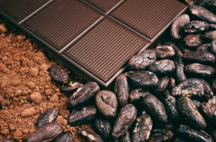 Cocoa and Cocoa Products